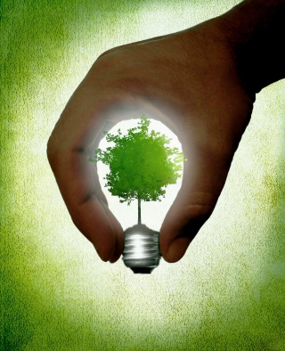 S_Hand_creating_a_lightbulb_with_green_tree_inside